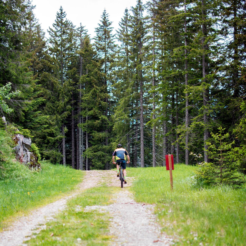 MTB e mountainbike in Campra